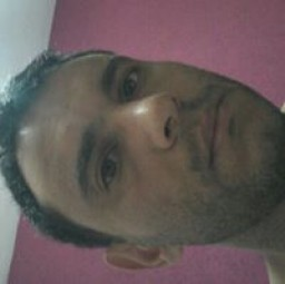 Alexandre  Barcellos